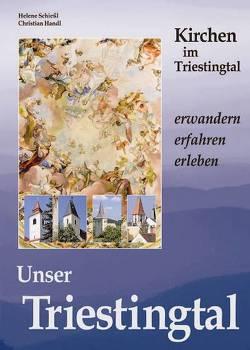 Unser Triestingtal 3 von Handl,  Christian, Schießl,  Helene
