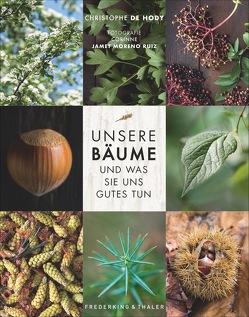 Unsere Bäume und was sie uns Gutes tun von de Hody,  Christophe, Ertl,  Helmut, Jamet Moreno Ruiz,  Corinne