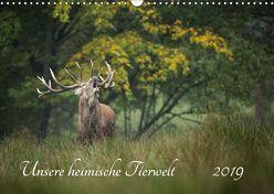 Unsere heimische Tierwelt (Wandkalender 2019 DIN A3 quer) von Reibert,  Björn