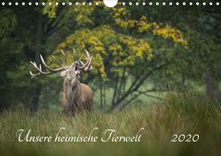 Unsere heimische Tierwelt (Wandkalender 2020 DIN A4 quer) von Reibert,  Björn