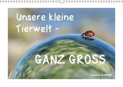 Unsere kleine Tierwelt – GANZ GROSS (Wandkalender 2019 DIN A3 quer) von Schmidt,  Sabine