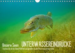 Unsere Seen (Wandkalender 2019 DIN A4 quer) von Hohlfeld,  Daniel