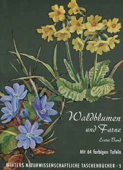 Unsere Waldblumen und Farngewächse von Hartmann,  F K, Rühl,  A.
