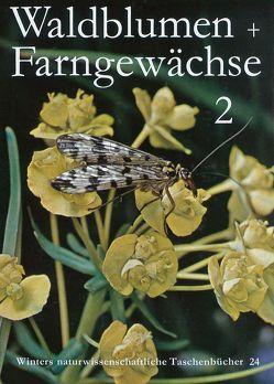 Unsere Waldblumen und Farngewächse von Hartmann,  F K, Paysan,  Klaus, Rühl,  A.