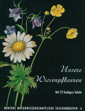 Unsere Wiesenpflanzen von Rauh,  Werner