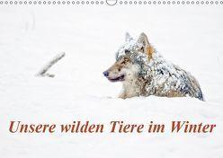Unsere wilden Tiere im Winter (Wandkalender 2019 DIN A3 quer)