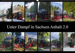 Unter Dampf in Sachsen Anhalt 2.0 (Wandkalender 2019 DIN A2 quer) von Gierok,  Steffen