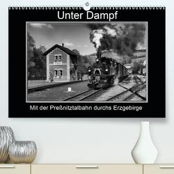 Unter Dampf – Mit der Preßnitztalbahn durchs Erzgebirge (Premium, hochwertiger DIN A2 Wandkalender 2020, Kunstdruck in Hochglanz) von Maurer,  Marion