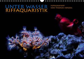 UNTER WASSER Riffaquaristik (Wandkalender 2021 DIN A3 quer) von Herzog,  Thomas, www.bild-erzaehler.com