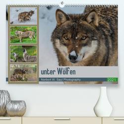 unter WölfenCH-Version (Premium, hochwertiger DIN A2 Wandkalender 2021, Kunstdruck in Hochglanz) von W. Saul,  Norbert