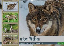 unter WölfenCH-Version (Wandkalender 2019 DIN A2 quer) von W. Saul,  Norbert