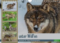 unter WölfenCH-Version (Wandkalender 2021 DIN A4 quer) von W. Saul,  Norbert