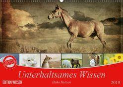 Unterhaltsames Wissen (Wandkalender 2019 DIN A2 quer) von Hultsch,  Heike