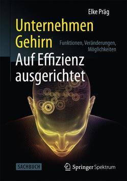 Unternehmen Gehirn: Auf Effizienz ausgerichtet von Präg,  Elke