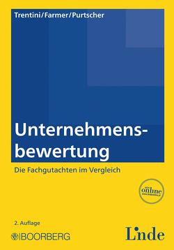 Unternehmensbewertung von Farmer,  Peter, Purtscher,  Victor, Trentini,  Simon