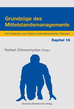 Unternehmensverantwortung, Netzwerke und Kooperationen von Wilde,  Harald, Zdrowomyslaw,  Norbert