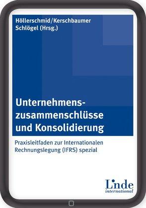 Unternehmenszusammenschlüsse und Konsolidierung von Höllerschmid,  Christian, Kerschbaumer,  Helmut, Schloegel,  Gordon