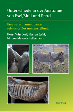 Unterschiede in der Anatomie von Esel/Muli und Pferd von Jerbi,  Hassen, Meier-Schellersheim,  Miriam, Wissdorf,  Horst