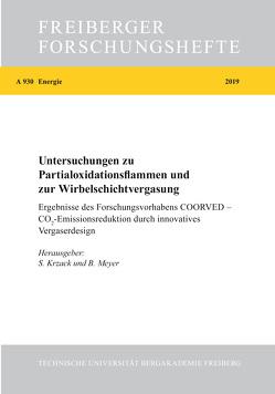 Untersuchungen zu Partialoxidationsflammen und zur Wirbelschichtvergasung von Krzack,  Steffen, Meyer,  Bernd