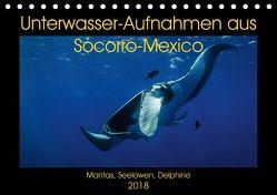 Unterwasser-Aufnahmen aus Socorro-Mexico (Tischkalender 2018 DIN A5 quer) von Caballero,  Sascha