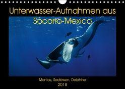 Unterwasser-Aufnahmen aus Socorro-Mexico (Wandkalender 2018 DIN A4 quer) von Caballero,  Sascha
