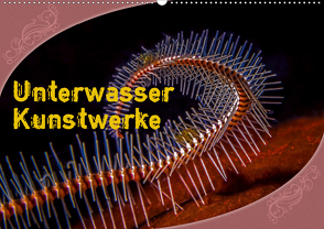 Unterwasser Kunstwerke (Wandkalender 2020 DIN A2 quer) von Gödecke,  Dieter