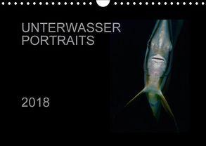 Unterwasser Portraits (Wandkalender 2018 DIN A4 quer) von Schulze / Kerstin Streicher,  Karsten