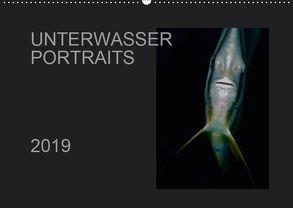Unterwasser Portraits (Wandkalender 2019 DIN A2 quer) von Schulze / Kerstin Streicher,  Karsten