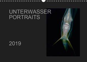 Unterwasser Portraits (Wandkalender 2019 DIN A3 quer) von Schulze / Kerstin Streicher,  Karsten