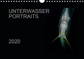 Unterwasser Portraits (Wandkalender 2020 DIN A4 quer) von Schulze / Kerstin Streicher,  Karsten