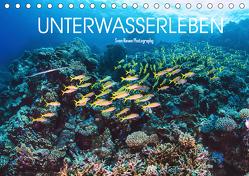 Unterwasserleben (Tischkalender 2019 DIN A5 quer) von Riewe,  Sven
