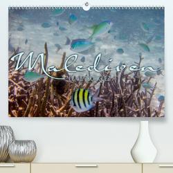 Unterwasserwelt der Malediven III (Premium, hochwertiger DIN A2 Wandkalender 2021, Kunstdruck in Hochglanz) von RODRIGUEZ Photography,  CLAVE