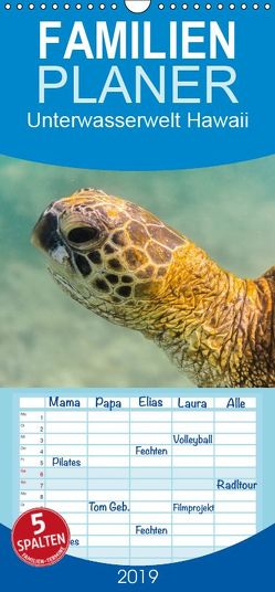 Unterwasserwelt Hawaii – Familienplaner hoch (Wandkalender 2019 , 21 cm x 45 cm, hoch) von Hitzbleck,  Rolf