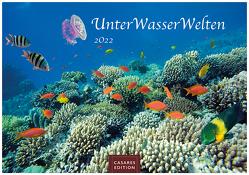 Unterwasserwelten 2022 L 35x50cm