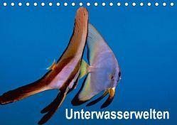 Unterwasserwelten (Tischkalender 2019 DIN A5 quer) von Gödecker,  Dieter
