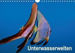 Unterwasserwelten (Wandkalender 2018 DIN A4 quer) von Gödecker,  Dieter