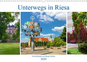 Unterwegs in Riesa (Wandkalender 2020 DIN A3 quer) von Seifert,  Birgit