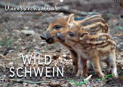 Unverwechselbar – Wildschwein (Wandkalender 2019 DIN A2 quer) von Roder,  Peter