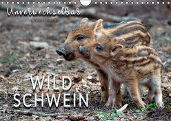 Unverwechselbar – Wildschwein (Wandkalender 2019 DIN A4 quer) von Roder,  Peter