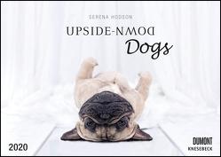 Upside-Down Dogs – Hunde stehen Kopf – Von Serena Hodson – Wandkalender – Format 42 x 29,7 cm von DUMONT Kalenderverlag, Hodson,  Serena