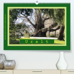 Uralt – Mit QR-Code und GPS zu alten Bäumen (Premium, hochwertiger DIN A2 Wandkalender 2021, Kunstdruck in Hochglanz) von Keller,  Angelika