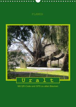 Uralt – Mit QR-Code und GPS zu alten Bäumen (Wandkalender 2020 DIN A3 hoch) von Keller,  Angelika