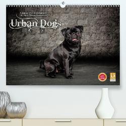 Urban Dogs – Hundekalender der anderen Art (Premium, hochwertiger DIN A2 Wandkalender 2021, Kunstdruck in Hochglanz) von Pinkoss Photostorys,  Oliver