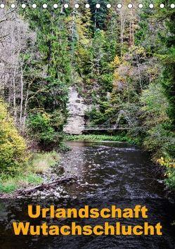 Urlandschaft Wutachschlucht (Tischkalender 2018 DIN A5 hoch) von Hug,  Simone