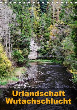 Urlandschaft Wutachschlucht (Tischkalender 2020 DIN A5 hoch) von Hug,  Simone