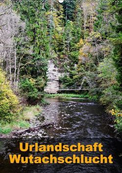Urlandschaft Wutachschlucht (Wandkalender 2018 DIN A2 hoch) von Hug,  Simone
