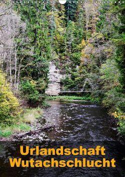 Urlandschaft Wutachschlucht (Wandkalender 2018 DIN A3 hoch) von Hug,  Simone