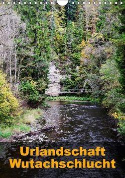 Urlandschaft Wutachschlucht (Wandkalender 2018 DIN A4 hoch) von Hug,  Simone
