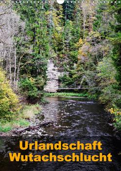 Urlandschaft Wutachschlucht (Wandkalender 2020 DIN A3 hoch) von Hug,  Simone