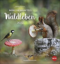 Vadim Trunov: Märchenhaftes Waldleben Postkartenkalender 2022 von Heye, Trunov,  Vadim